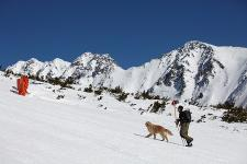 Man with dog in mountains in Slovakia